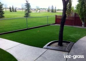 Artificial Grass Residential 4