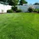 back yard 250890 1920