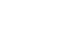 house wire model fade white 1500x1085