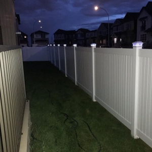 white fp solar lights 4