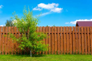 woodenprivacyfence